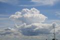 Cumulus bourgeonnant